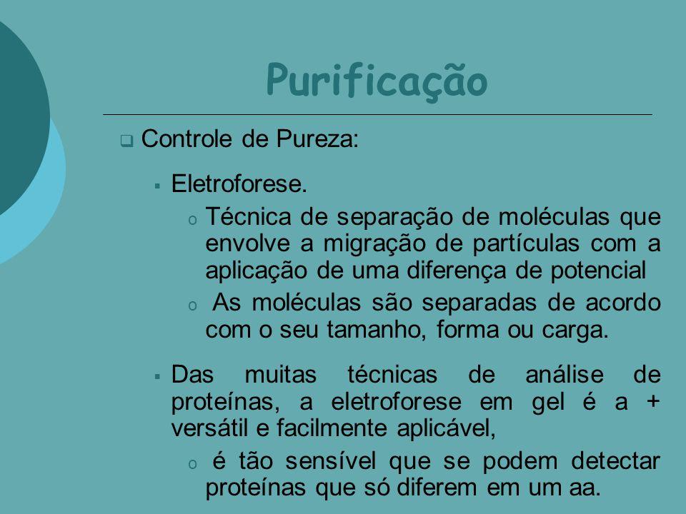 Purificação Controle de Pureza: Eletroforese.