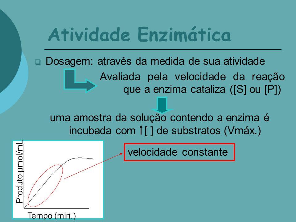 Atividade Enzimática Dosagem: através da medida de sua atividade