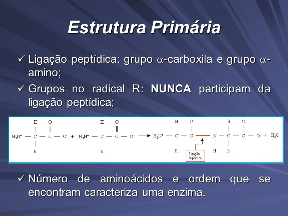Estrutura Primária Ligação peptídica: grupo -carboxila e grupo -amino; Grupos no radical R: NUNCA participam da ligação peptídica;