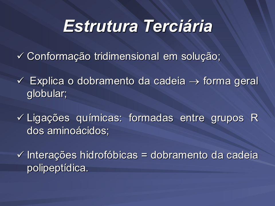 Estrutura Terciária Conformação tridimensional em solução;