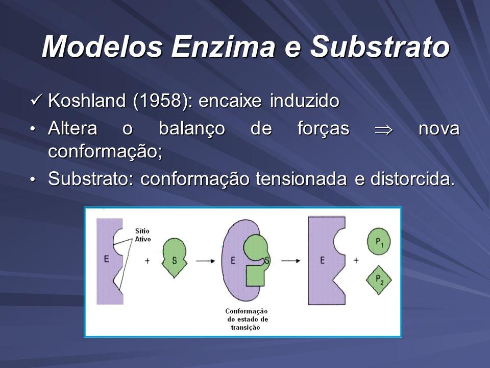 Modelos Enzima e Substrato