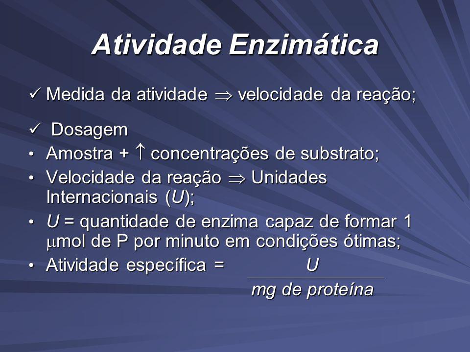 Atividade Enzimática Medida da atividade  velocidade da reação;
