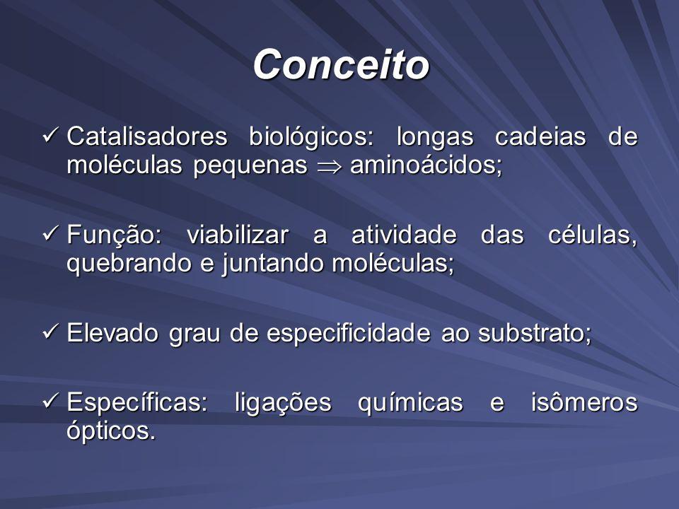 Conceito Catalisadores biológicos: longas cadeias de moléculas pequenas  aminoácidos;