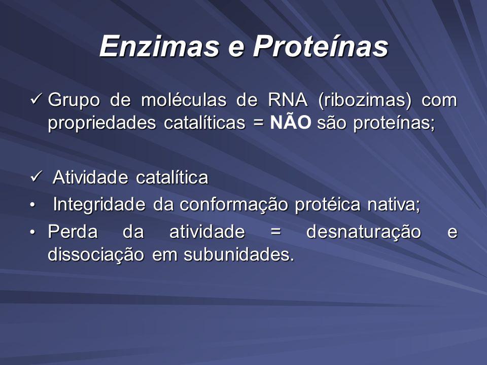 Enzimas e Proteínas Grupo de moléculas de RNA (ribozimas) com propriedades catalíticas = NÃO são proteínas;