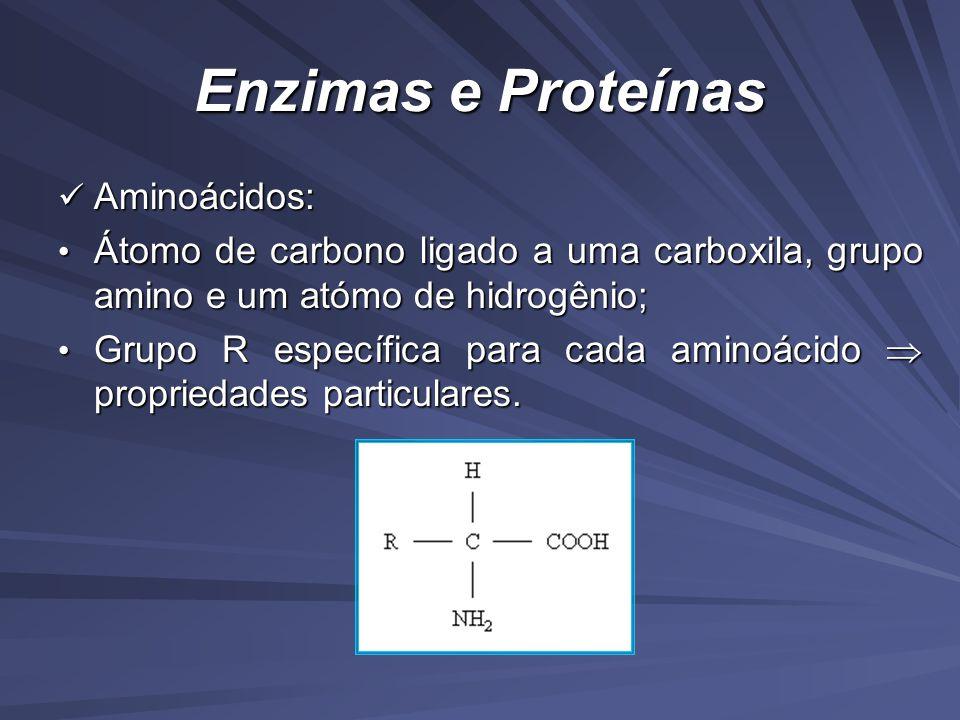 Enzimas e Proteínas Aminoácidos: