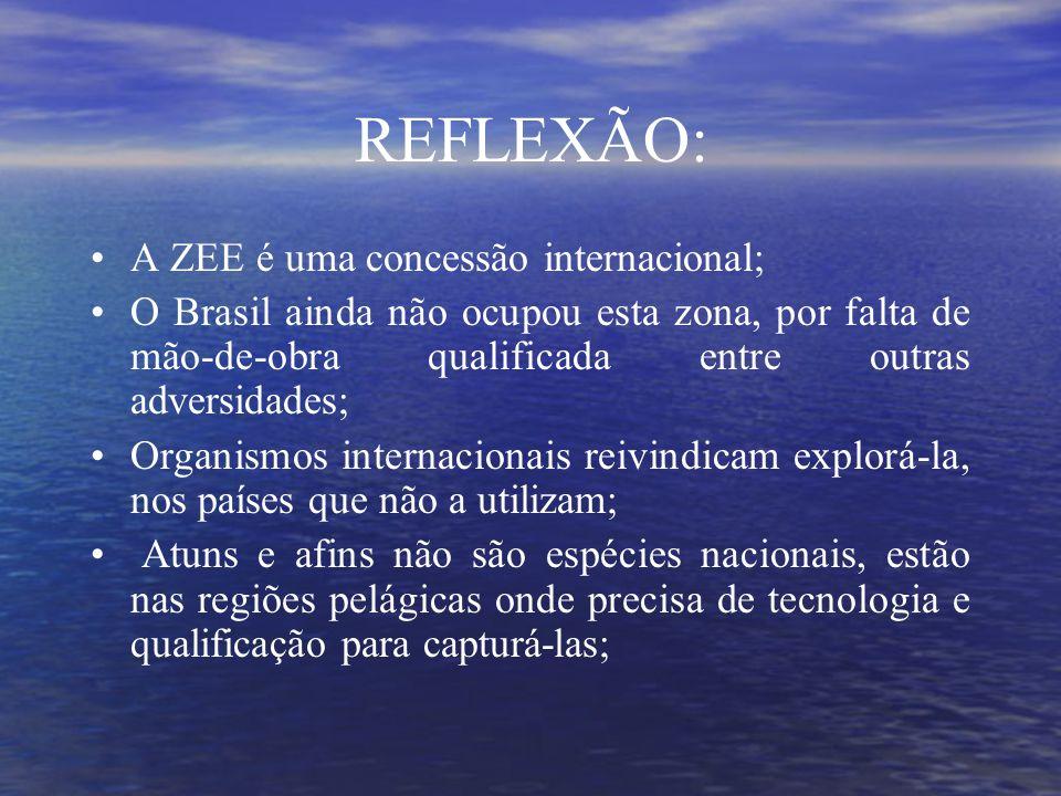 REFLEXÃO: A ZEE é uma concessão internacional;