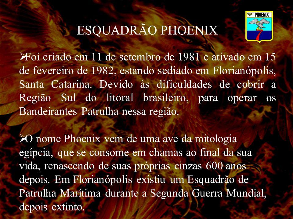 ESQUADRÃO PHOENIX