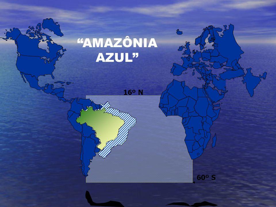 AMAZÔNIAAZUL 60º S 16º N