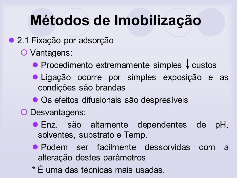 Métodos de Imobilização