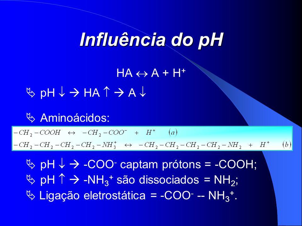 Influência do pH HA  A + H+ pH   HA   A  Aminoácidos: