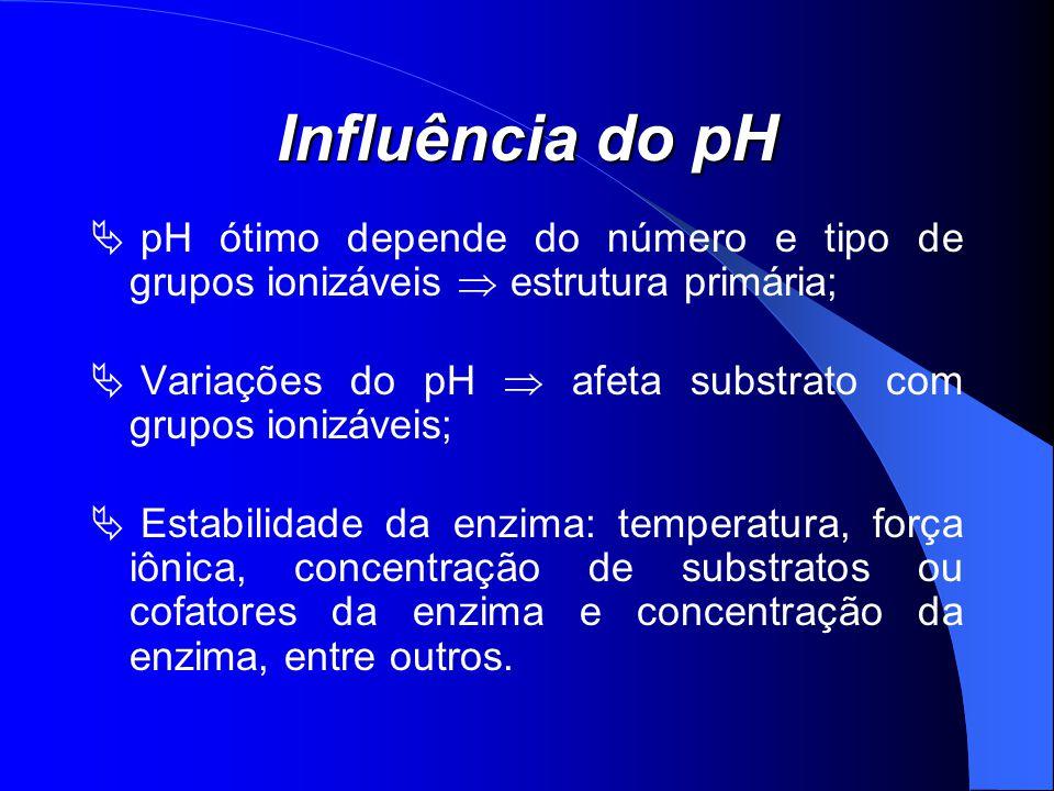 Influência do pH pH ótimo depende do número e tipo de grupos ionizáveis  estrutura primária;