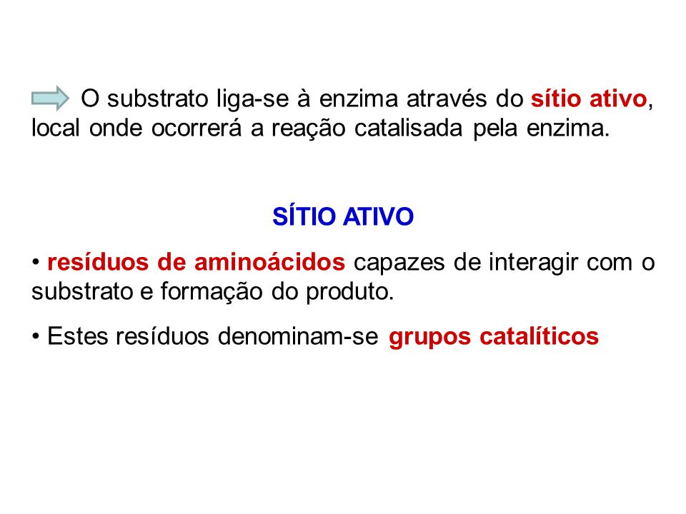 O substrato liga-se à enzima através do sítio ativo, local onde ocorrerá a reação catalisada pela enzima.