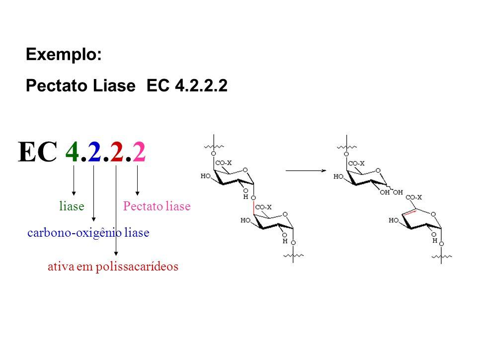 EC 4.2.2.2 Exemplo: Pectato Liase EC 4.2.2.2 liase Pectato liase