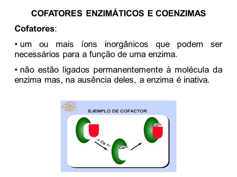 COFATORES ENZIMÁTICOS E COENZIMAS