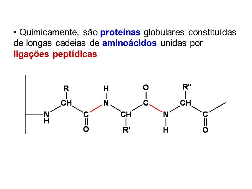 Quimicamente, são proteínas globulares constituídas de longas cadeias de aminoácidos unidas por ligações peptídicas