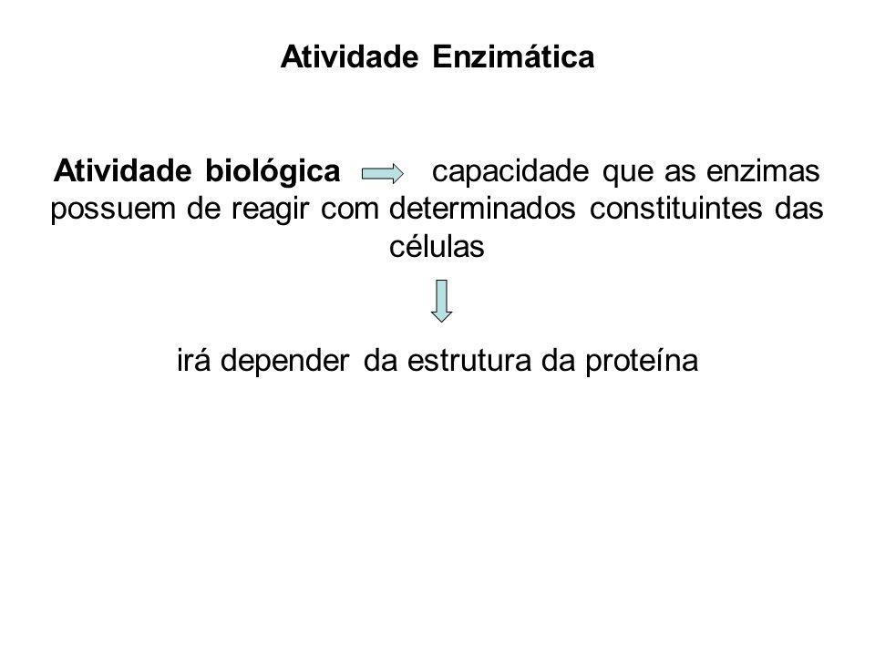 irá depender da estrutura da proteína