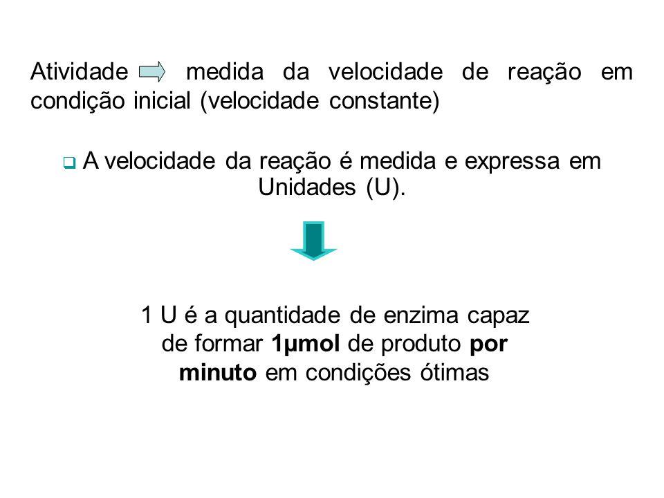 A velocidade da reação é medida e expressa em Unidades (U).