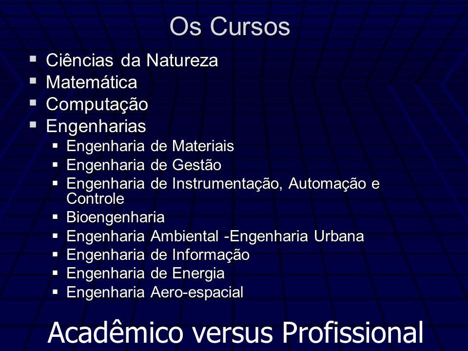 Acadêmico versus Profissional