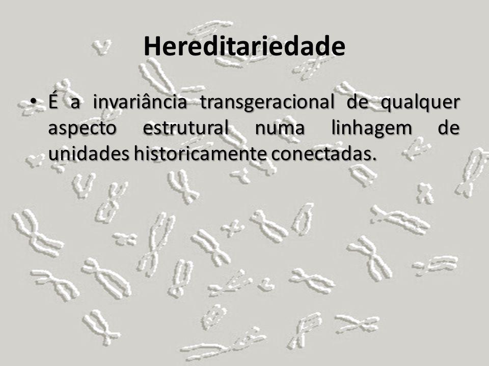 Hereditariedade É a invariância transgeracional de qualquer aspecto estrutural numa linhagem de unidades historicamente conectadas.