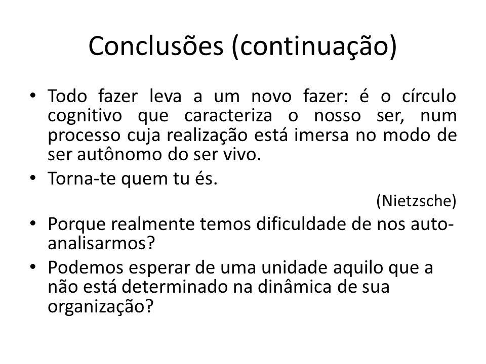 Conclusões (continuação)