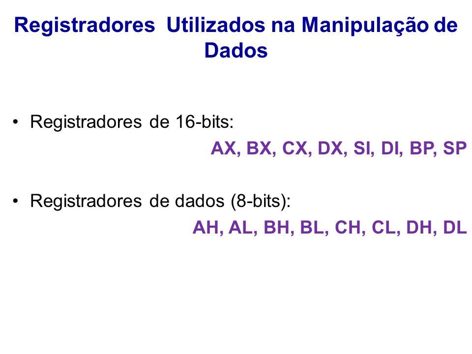 Registradores Utilizados na Manipulação de Dados