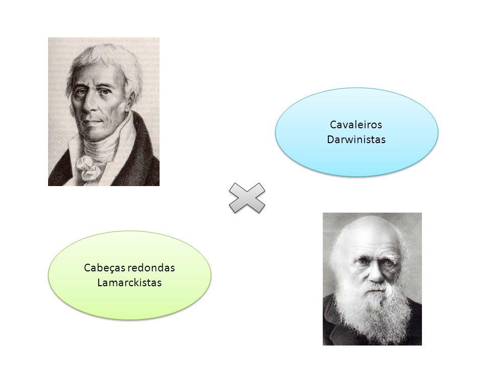 Cavaleiros Darwinistas
