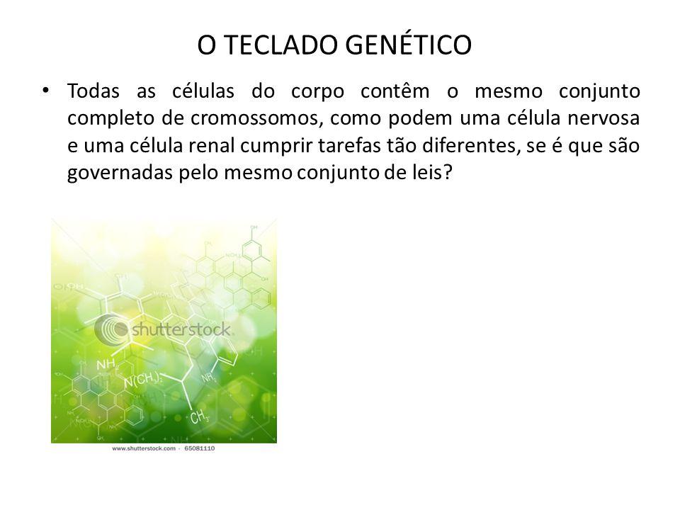 O TECLADO GENÉTICO