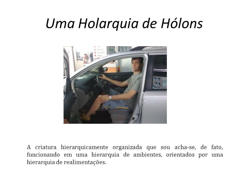 Uma Holarquia de Hólons