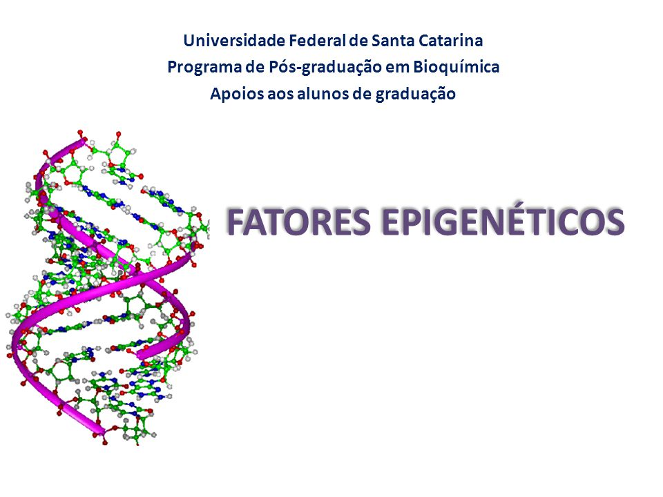 FATORES EPIGENÉTICOS Universidade Federal de Santa Catarina