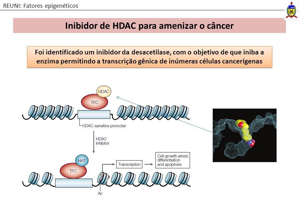 Inibidor de HDAC para amenizar o câncer