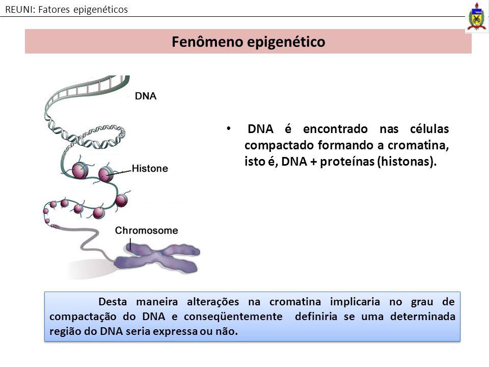 REUNI: Fatores epigenéticos