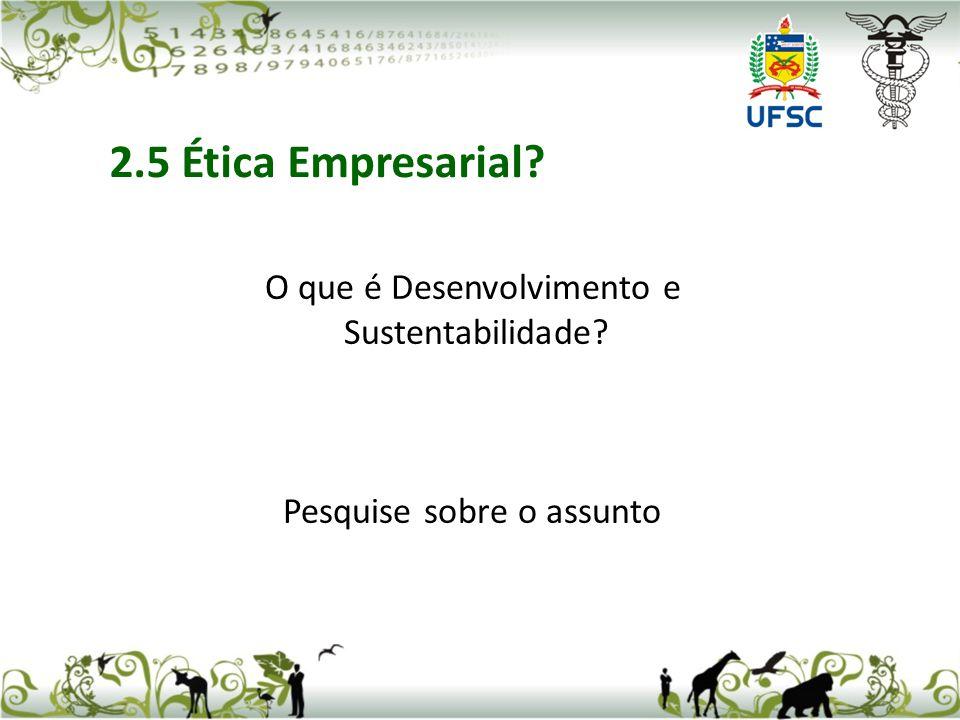 2.5 Ética Empresarial O que é Desenvolvimento e Sustentabilidade