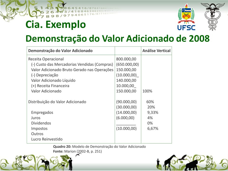 Cia. Exemplo Demonstração do Valor Adicionado de 2008