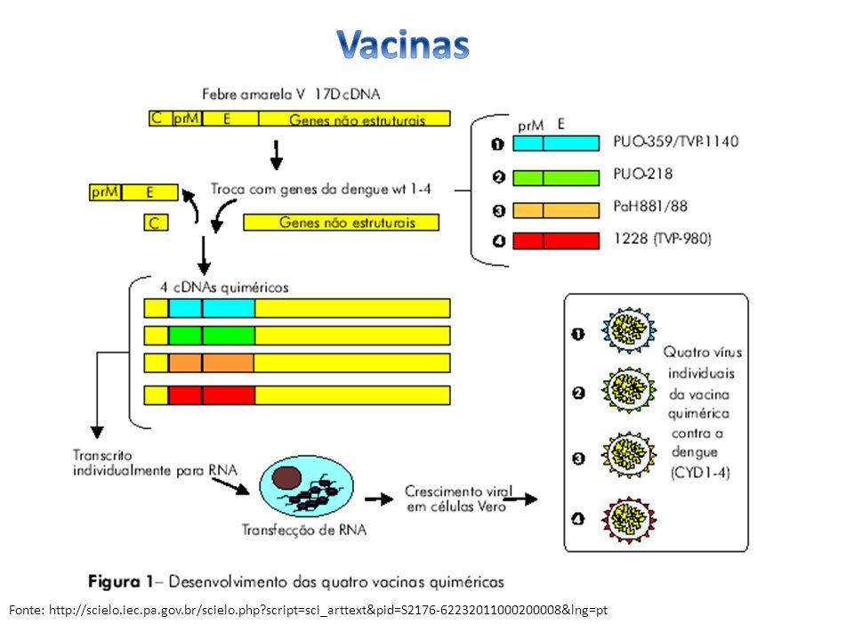 Vacinas Fonte: http://scielo.iec.pa.gov.br/scielo.php script=sci_arttext&pid=S2176-62232011000200008&lng=pt.