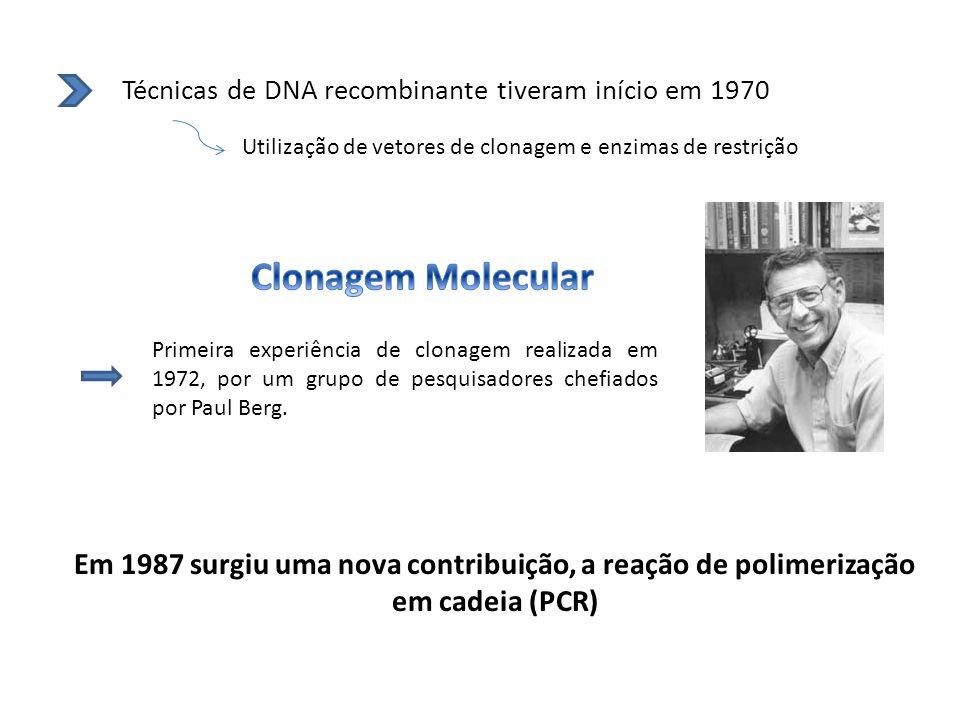 Técnicas de DNA recombinante tiveram início em 1970