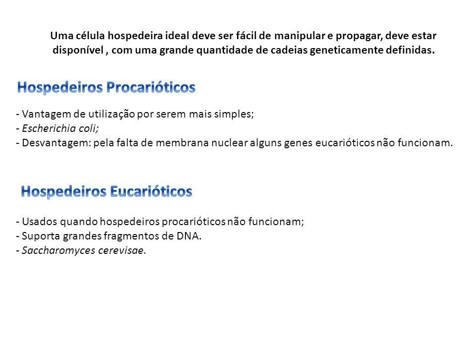 Hospedeiros Procarióticos Hospedeiros Eucarióticos