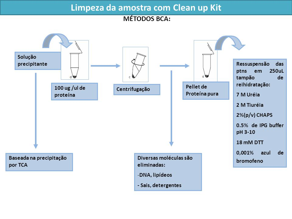 Limpeza da amostra com Clean up Kit