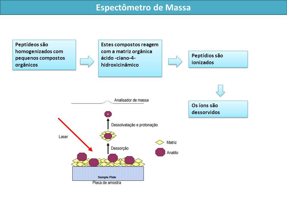 Espectômetro de Massa Peptídeos são homogenizados com pequenos compostos orgânicos.