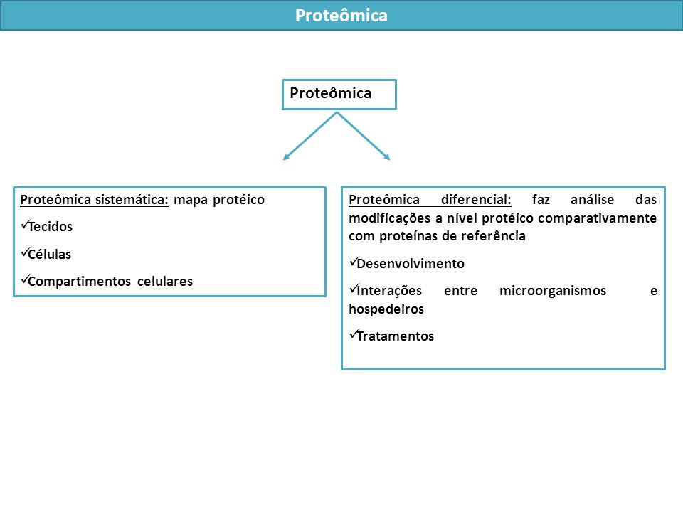 Proteômica Proteômica Proteômica sistemática: mapa protéico Tecidos