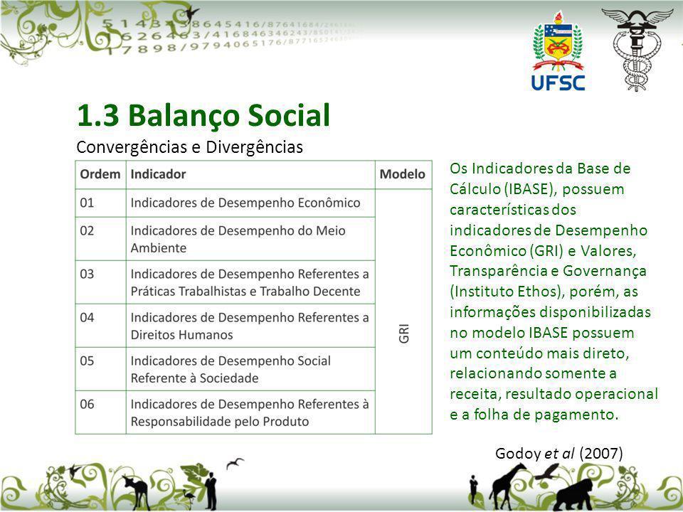 1.3 Balanço Social Convergências e Divergências