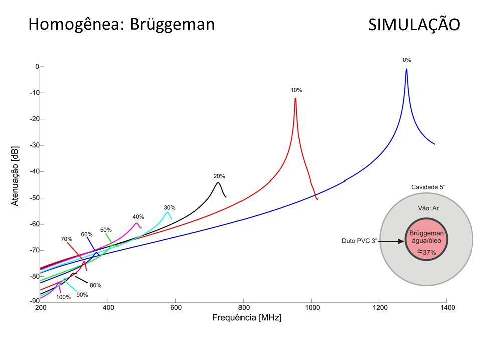 Homogênea: Brüggeman SIMULAÇÃO