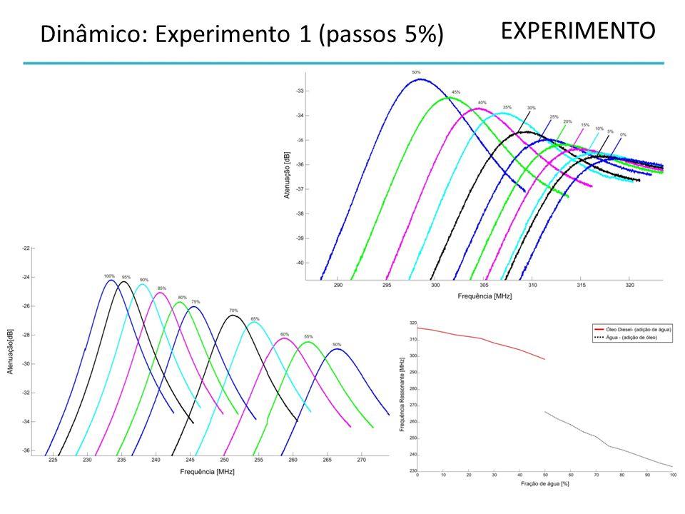 EXPERIMENTO Dinâmico: Experimento 1 (passos 5%)