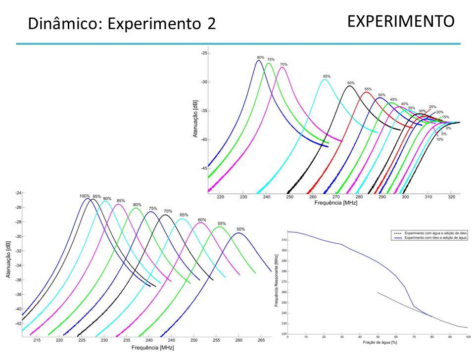 EXPERIMENTO Dinâmico: Experimento 2