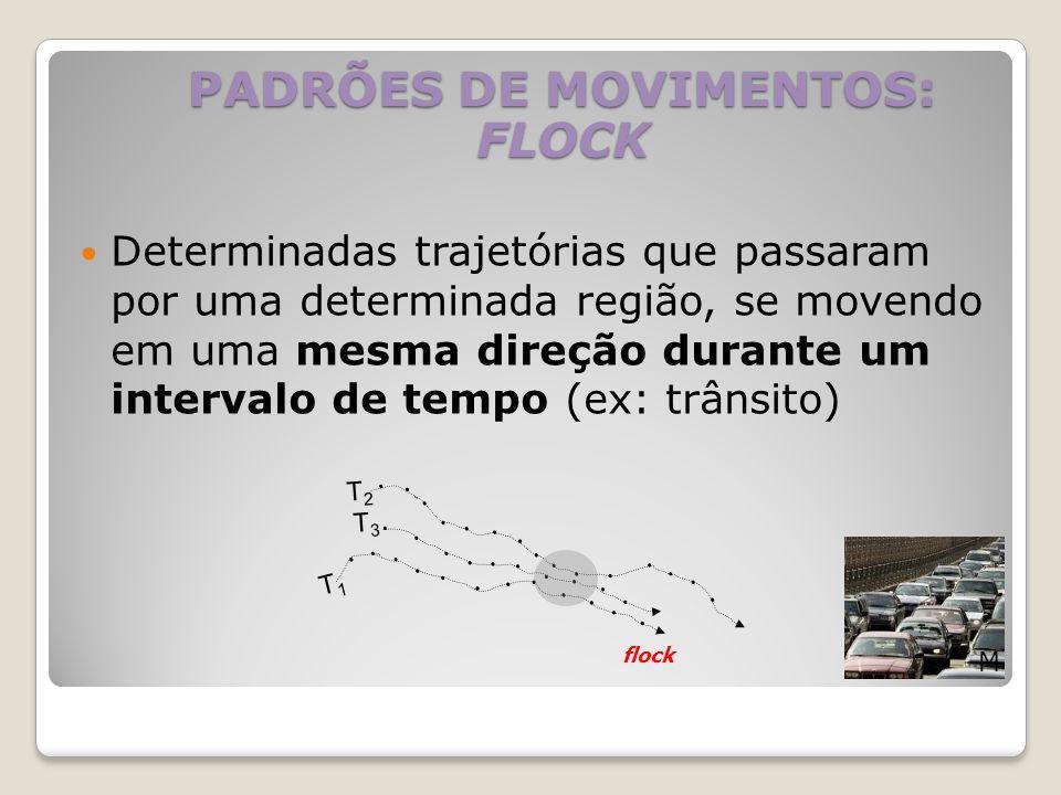 PADRÕES DE MOVIMENTOS: FLOCK