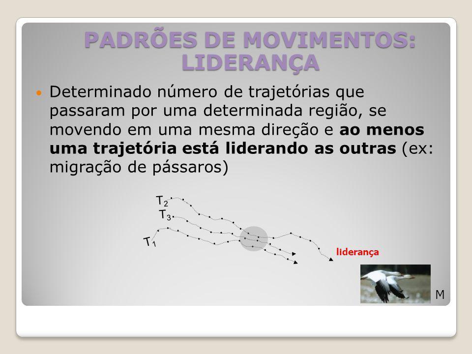 PADRÕES DE MOVIMENTOS: LIDERANÇA
