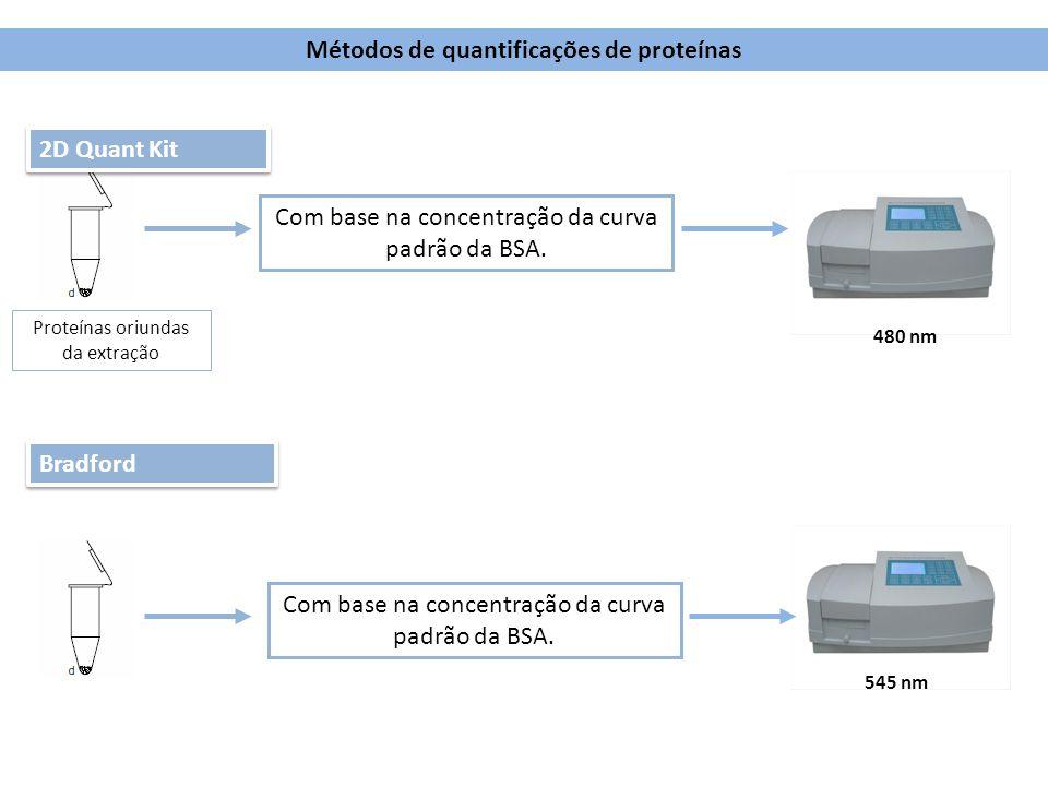 Métodos de quantificações de proteínas