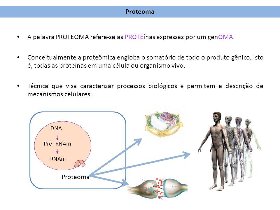 A palavra PROTEOMA refere-se as PROTEínas expressas por um genOMA.