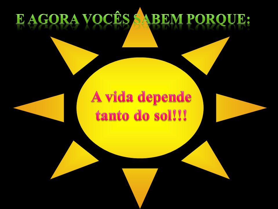 A vida depende tanto do sol!!!