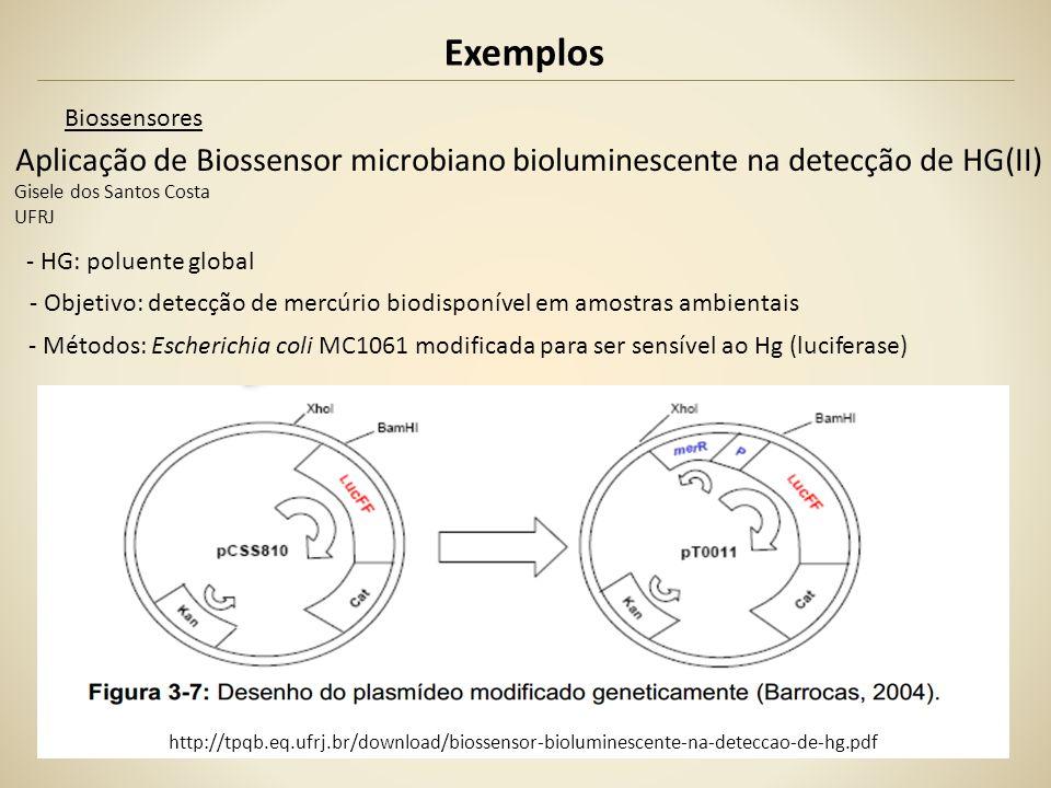 Exemplos Biossensores