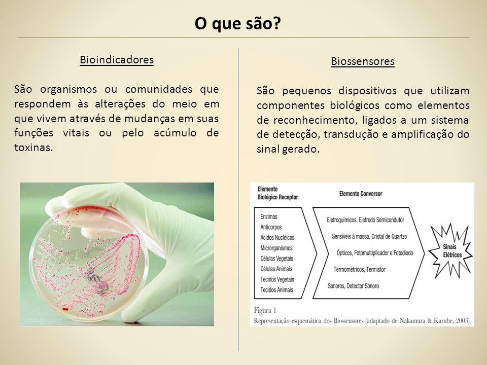 O que são Bioindicadores Biossensores